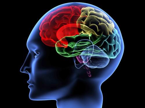 PSI_Brain
