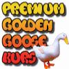 Golden Goose MQL4 Seminar Logo