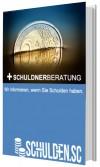 E-Book Schuldnerberatung