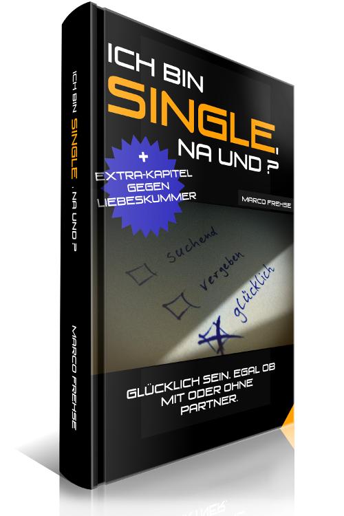 E-Book, Ich bin Single na und, Ratgeber