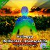 Heilyoga-Meditation CD4