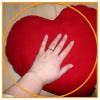 """Cover """"Leg die Hand auf Dein Herz"""""""