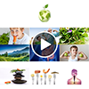 RVS2016 Komplettpaket Online-Version