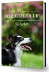 Border Collie Ratgeber