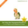Papageienflüsterer eBook Cover
