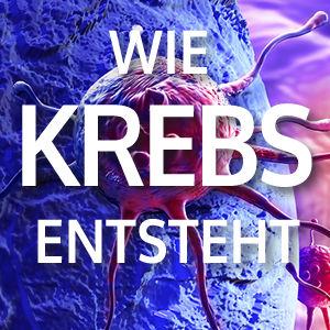 ov_20_krebs_produkt