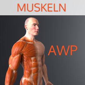 awp_44_product